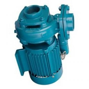 Atos PFG-199 fixed displacement pump