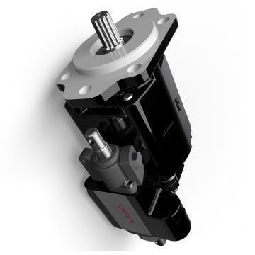 Atos PFG-218/S Gear Pump
