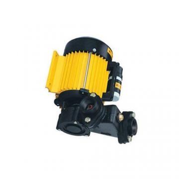 Yuken PV2R12-23-47-F-RAAA-4222 Double Vane Pumps